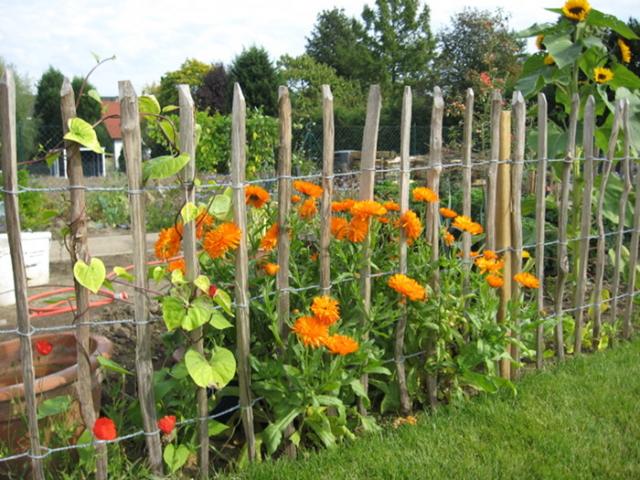 Bauerngarten mit Kastanienzaun